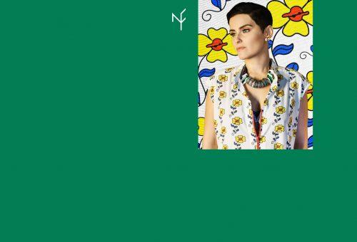 nelly_zalgiris-web-slider